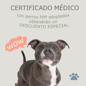 certificado medico tudela perros